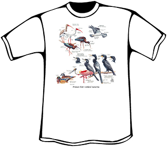Water Birds T-Shirt (Organic)